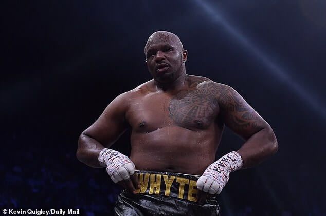 WBC reinstates Britains Whyte as interim heavyweight champion